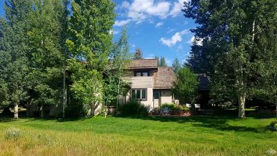 Edwards Single Family Home For Sale: 221 June Creek Road