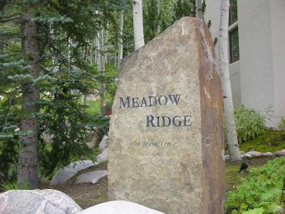 Beaver Creek Single Family Home For Sale: 17 Meadow Court #E4