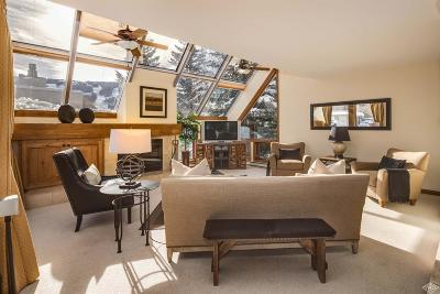 Vail Single Family Home For Sale: 770 Potato Patch Drive #4
