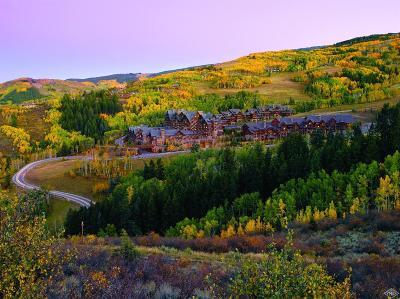 Beaver Creek Condo/Townhouse For Sale: 130 Daybreak #HS632