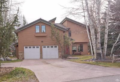 Edwards Single Family Home For Sale: 28 Castle Peak Lane