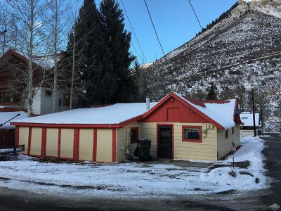 Minturn Single Family Home For Sale: 491 Main Street