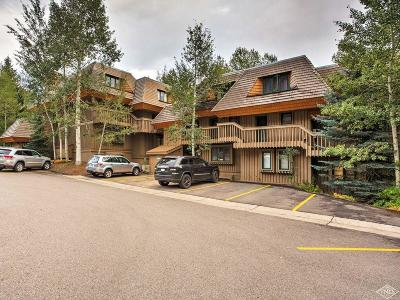 Vail Condo/Townhouse For Sale: 980 Vail View Drive #213C