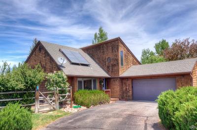 Eagle Single Family Home For Sale: 730 Bull Run