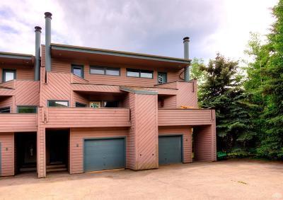 Avon Single Family Home For Sale: 44 Eagle Road #4