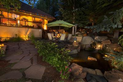 Avon Single Family Home For Sale: 653 Eagle Drive
