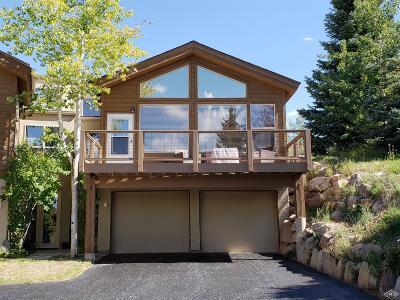 Avon Single Family Home For Sale: 3062 Wildridge Road #1