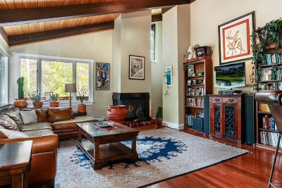 Vail Single Family Home For Sale: 1759 Sierra Trail