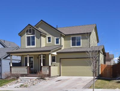 Gypsum Single Family Home For Sale: 81 Stratton Circle