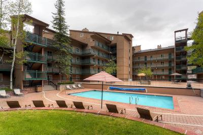 Vail Timeshare For Sale: 508 E Lionshead Circle #604