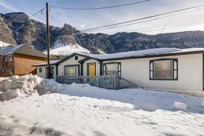 Minturn Single Family Home For Sale: 1016 Mountain Drive