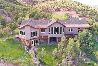 Gypsum Single Family Home For Sale: 1055 Cottonwood Pass Road #B