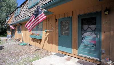 Vail Condo/Townhouse For Sale: 2480 Chamonix Lane #K3