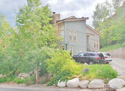 Vail Condo/Townhouse For Sale: 1063 Vail View Drive #5