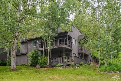 Vail Condo/Townhouse For Sale: 1512 Buffehr Creek Road #B34