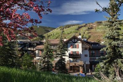 Vail Timeshare For Sale: 242 E Meadow Drive #200-9