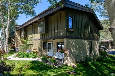 Vail Single Family Home For Sale: 1975 W Gore Creek Drive W #21