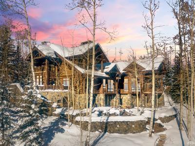Single Family Home For Sale: 3483 Daybreak Ridge