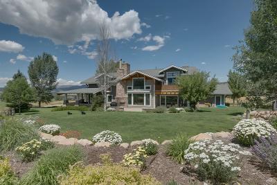 Eagle Single Family Home For Sale: 222 W Foxglove Lane