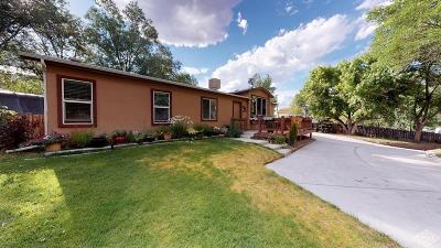 Gypsum Single Family Home Under Contract: 738 Rangeview Dr Drive