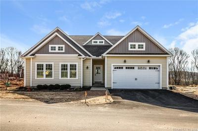 Essex Condo/Townhouse For Sale: 22 Essex Glen Drive #22