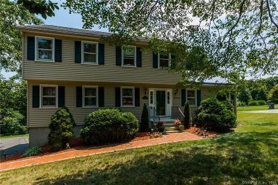 Monroe Single Family Home For Sale: 972 Monroe Turnpike