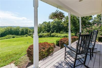 Woodbury Single Family Home For Sale: 309 Old Town Farm Road