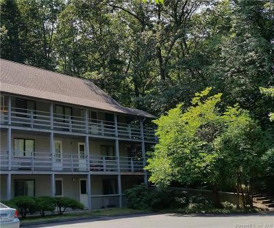 Plainville Condo/Townhouse For Sale: 17 Farmington Avenue #4