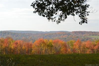 Woodbury Residential Lots & Land For Sale: 89 Quail Run Road #Lot 18