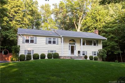 Fairfield County Single Family Home For Sale: 22 Berndale Drive