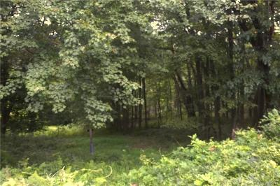 Wilton Residential Lots & Land For Sale: 190 Cannon Road