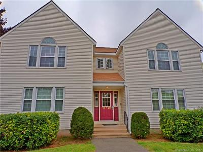 Tolland County, Windham County Condo/Townhouse For Sale: 14 Pinney Street #20