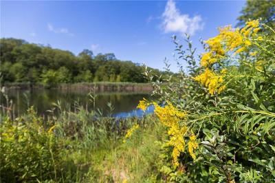 New London County Residential Lots & Land For Sale: 335 Boston Post Road