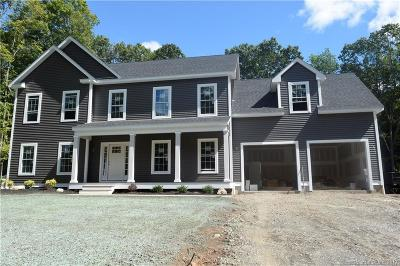 North Haven Single Family Home For Sale: 205 Maple Avenue