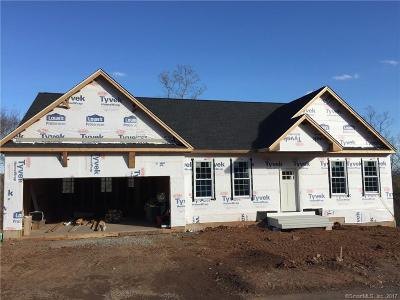 Middletown Single Family Home For Sale: 6 Webster Lane