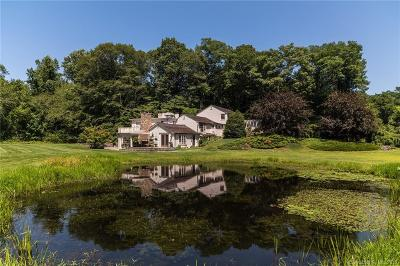 Single Family Home For Sale: 20 River Road
