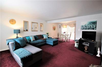 New Britain Condo/Townhouse For Sale: 254 Pierremount Avenue