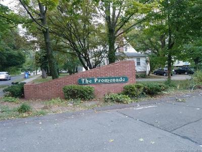 Hamden Condo/Townhouse For Sale: 141 Promenande Drive #141