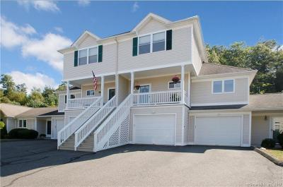 Newtown Condo/Townhouse For Sale: 3 Turtle Spring Lane #3