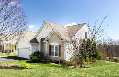 Oxford Single Family Home For Sale: 412 Mulligan Drive