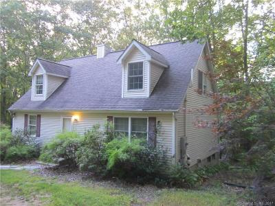 Woodbury Single Family Home For Sale: 21 Indian Lane