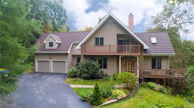 Litchfield Single Family Home For Sale: 22 Old Forge Hollow Road