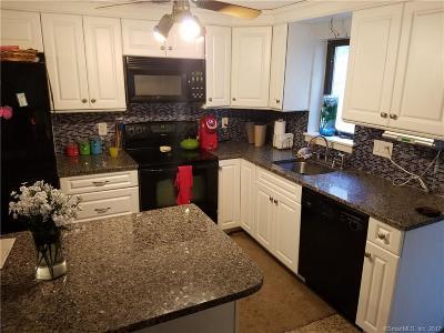 Naugatuck Condo/Townhouse For Sale: 51 Brook Street #8D