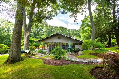 Roxbury Single Family Home For Sale: 195 Painter Hill Road