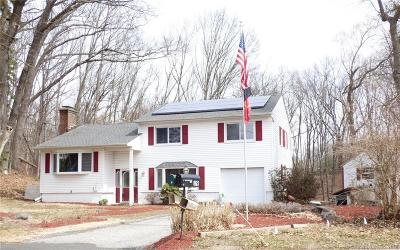 Danbury Single Family Home For Sale: 18 Clearbrook Road