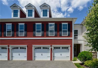 Danbury Condo/Townhouse For Sale: 21 Mill Road
