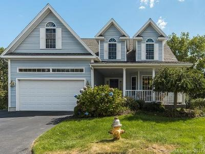 Shelton Single Family Home For Sale: 17 Freedom Way