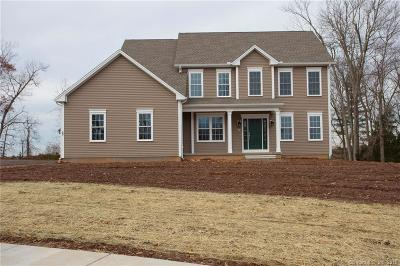 Rocky Hill Single Family Home For Sale: 28 Southbrook