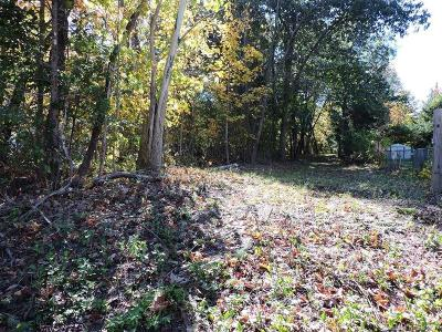 Residential Lots & Land For Sale: 133 Washington Street