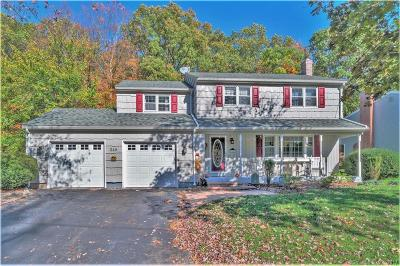 Newington Single Family Home For Sale: 246 Candlewyck Drive